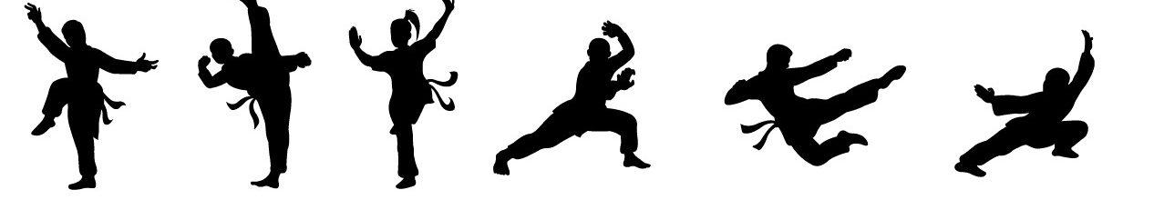 Kung Fu Poses